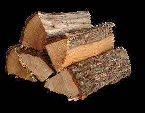 Brennholz Holzart Eiche