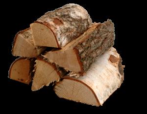 Brennholz Holzart Birke