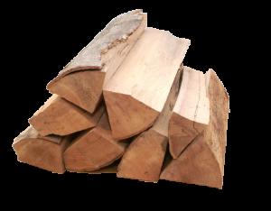 Brennholz Holzart Buche